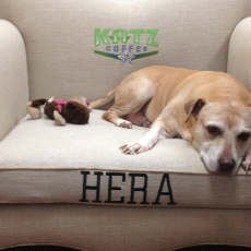 Image for Hera