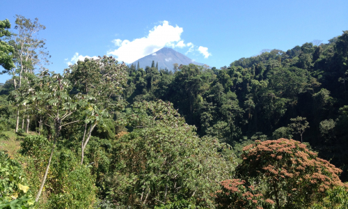 Guatemala Gallery Images